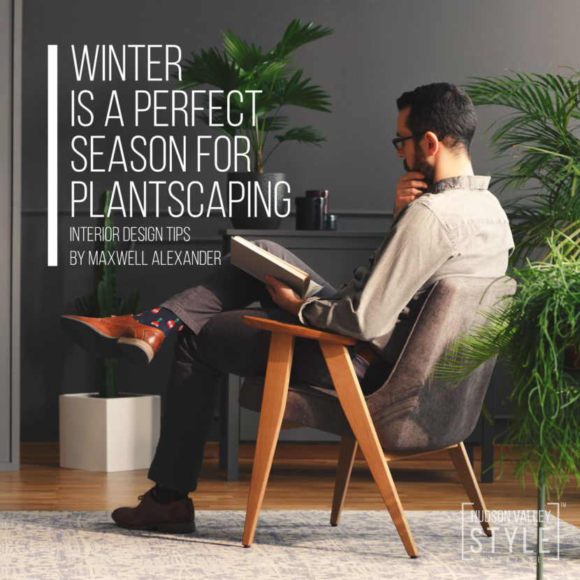 Winter is a great time to make your home come to life - Interior Design and Plantscaping Tips from Maxwell Alexander