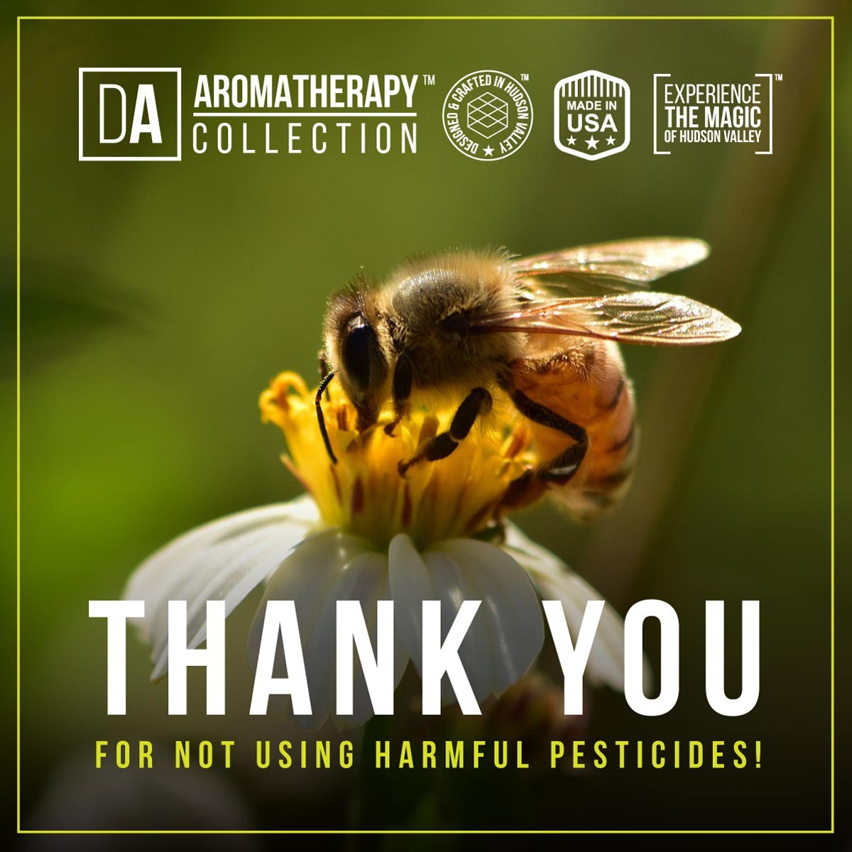 The best natural bug, tick and mosquito repellent you can buy - Bees Thank You for not using harmful pesticides