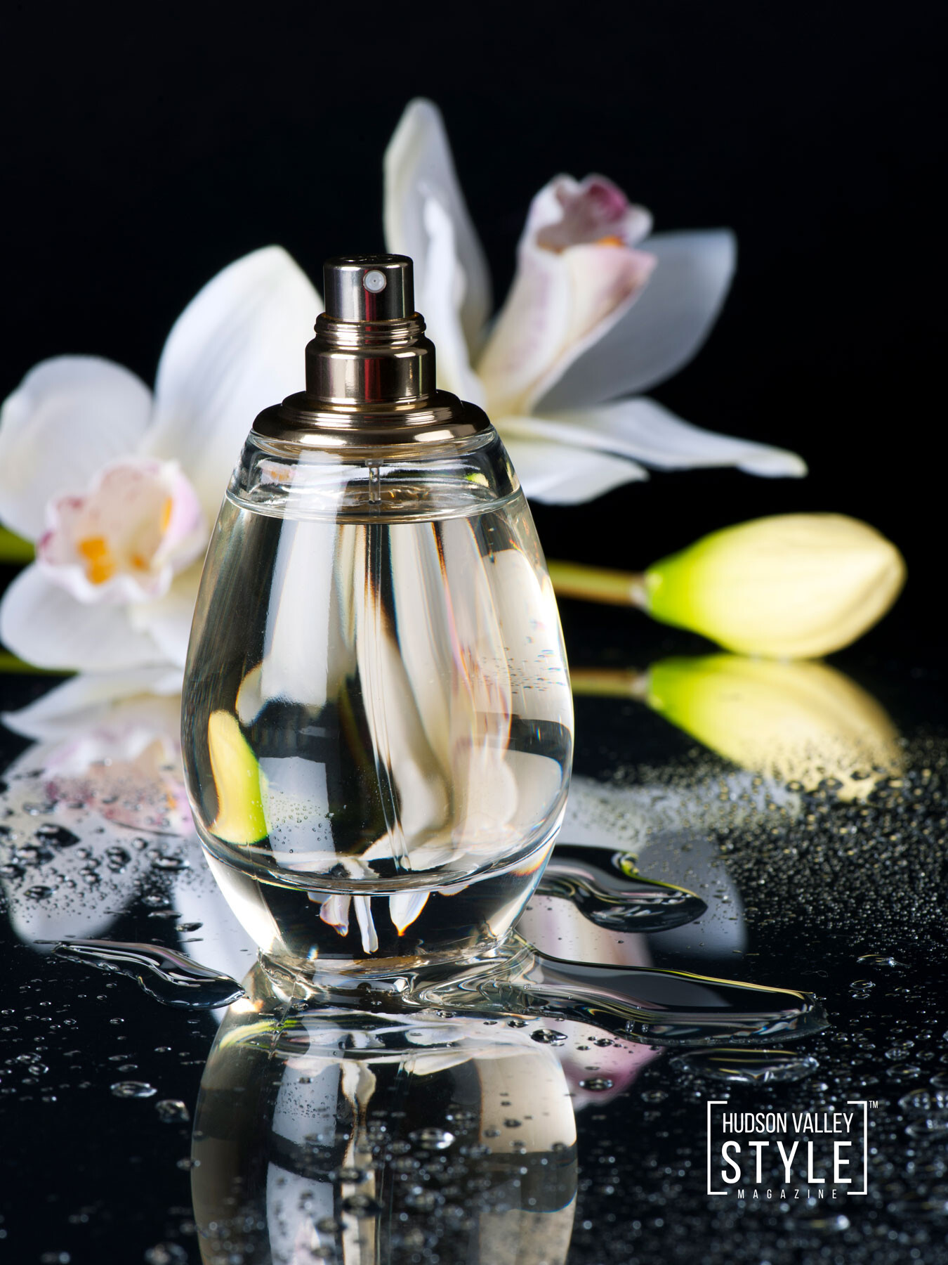 Compare Your Perfumes To An Opera. Which One Would It Be? – Perfume Gifts