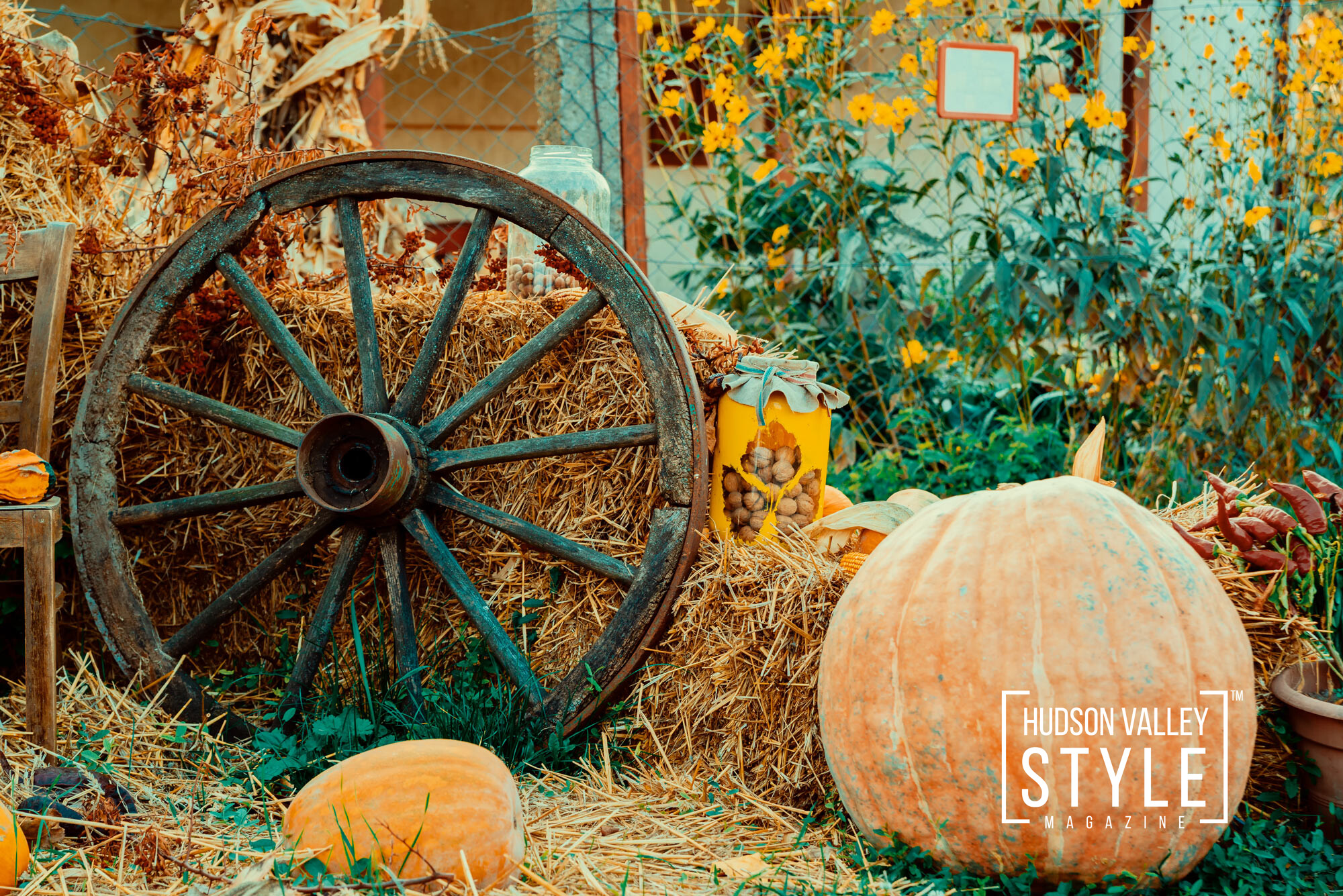 Top 10 Budget-Friendly Ways to Welcome Fall in Your Hudson Valley Home with Real Estate Broker Dino Alexander